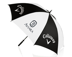 Corporate Logo - Umbrella