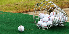 Basket of driving range balls