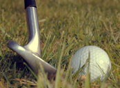Golf club - wedge